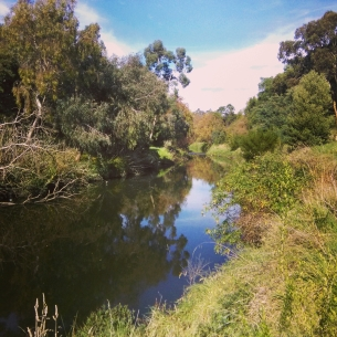 Moonee Ponds Creek