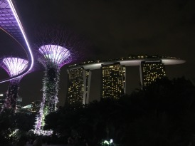 Marina Bay Sands hotel light up beautifully at night